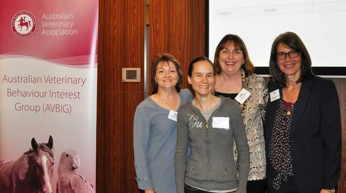 Karen Donnelly,  Jen Nesbitt-Hawes, Carmel  Hodgins and Dr Susan Friedman.