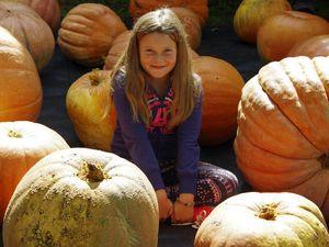 RECIPE: Pumpkin and sweet potato soup