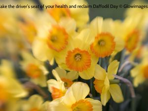 Healthier views are springing up amidst the well-meaning daffodils