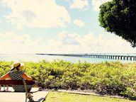 LIVING on the Sunshine Coast is pretty amazing.