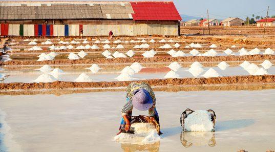 The salt fields of Kampot.