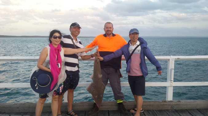Urangan pier catch