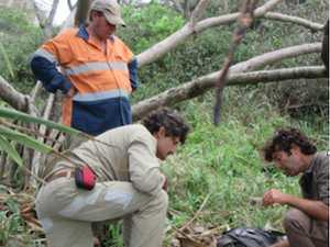 Launch of Pandanus tree history booklet during NAIDOC Week
