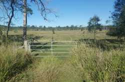 Situated only 1km (approx.) from the township of Tiaro and 25km (approx.) from the city of Maryborou...