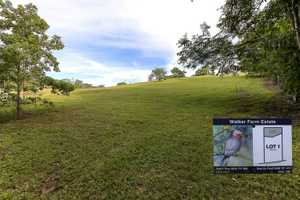 Mainly cleared, this North facing gently sloping acreage lot will suit a split level or a pole...