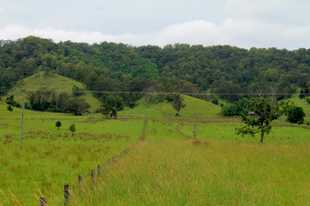 Located only minutes from Kyogle, this vacant 52 acres would allow you to run a few cows or a get aw...
