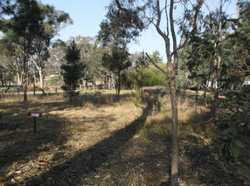 How often can you find a half-acre block in a quaint village setting for this price .... the answer...