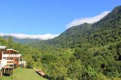 Nestled on 31.82 lush acres (12.87Ha) of rainforest with the most breath taking protected natural wa...