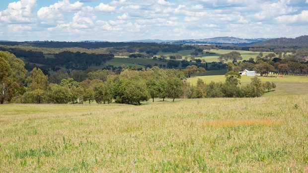 "Located 26km south from Tenterfield, ""Curvey's"" comprises 55.8 hectares or 137.8 acres of grazing /..."