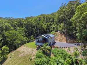 Rainforest retreat...