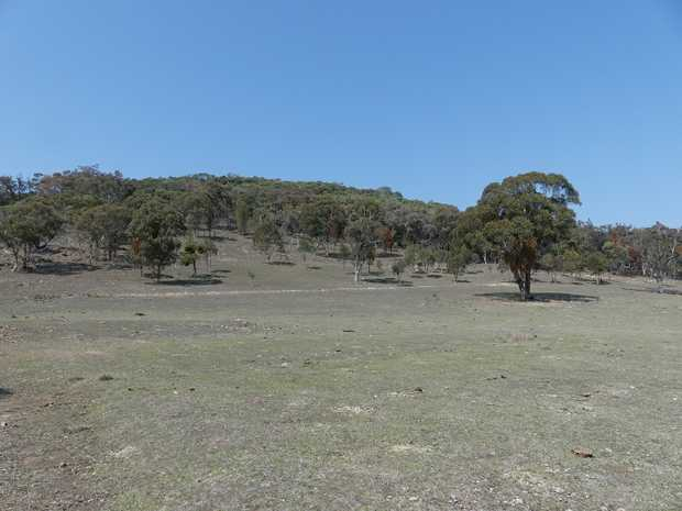 Balllandean heart of Granite Belts wine country along with numerous resturaunts. This private property...