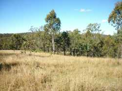 Load up your camping gear and your motorbikes and come and enjoy this 42.8 acre (17.33ha) retreat. ...