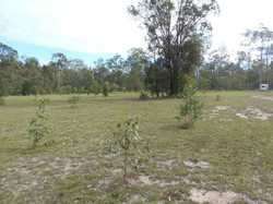Situated 25 minutes north of Gympie is a lifestyle 40 acre property with plenty of water and a timbe...