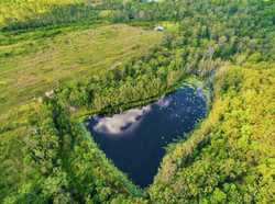 141 acres in Goomboorian, 60 secluded cleared acres surrounded by another 80 acres of hardwood fores...