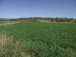 Located close to Goomeri, this 175 acre property, with highway frontage, is considered one the bette...