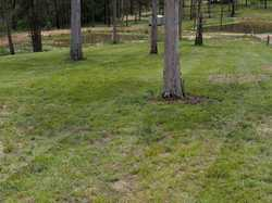 Situated approx. 15 minutes north of Gympie is this 1.5 acre parklike block.  The block has bitumen...