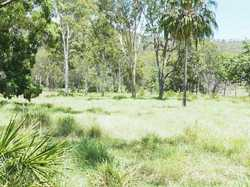 Situated approx. 25 minutes west of Gympie is this 37 acre fully fenced block on top of the ridge wi...