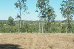 Situated approx. 13 km from Tiaro in an Estate is a fully fenced 40 acre block with great views look...