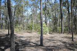 These 2 blocks are situated in Glenwood and are to be sold as one parcel of 3.88acs on 2 titles.  Po...