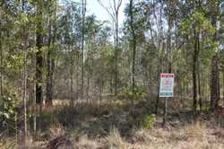 Escape the rat race and enjoy the peace and quiet of this quiet bush block situated at Bauple. The b...